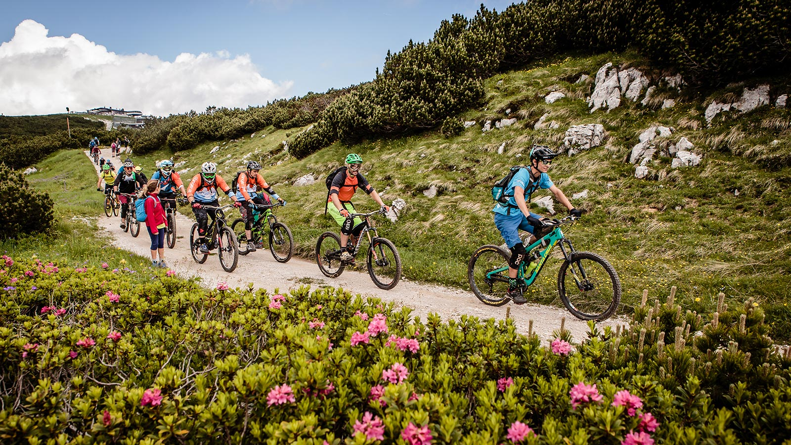 A group of cyclists takes a descent in Andalo